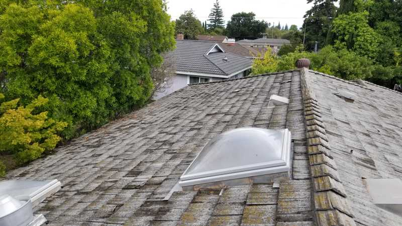 Best Shingle Roof Repair and Replacement